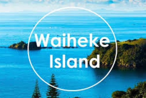 5G-Free Waiheke Rally on Saturday 25 January 2020